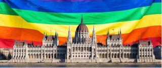 Nyílt levél a magyar országgyűlési képviselőkhöz: Ne szavazzák meg az orosz mintájú támadást a szólásszabadság és gyermekjogok ellen!