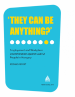"""They can be anything?"" Employment and Workplace Discrimination against LGBTQI People in Hungary"