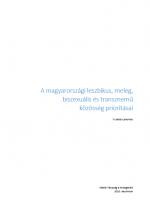A magyarországi leszbikus, meleg, biszexuális és transznemű  közösség prioritásai